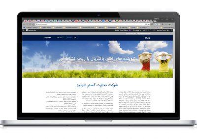 طراحی وب سایت تجارت گستر شونیز